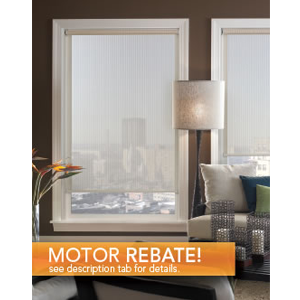 But Its Free - Motorized Roller Shade